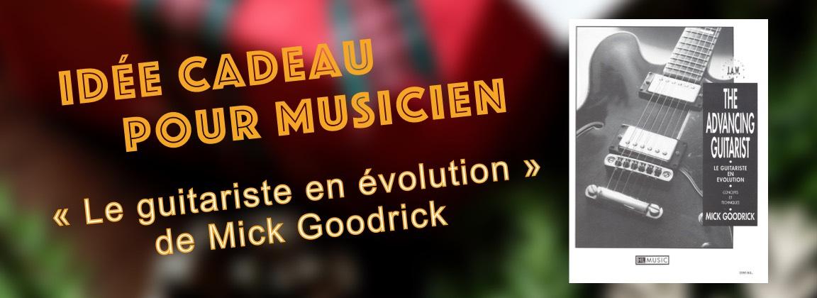 le-guitariste-en-evolution-idee-cadeau-pour-musicien-methode-guitare